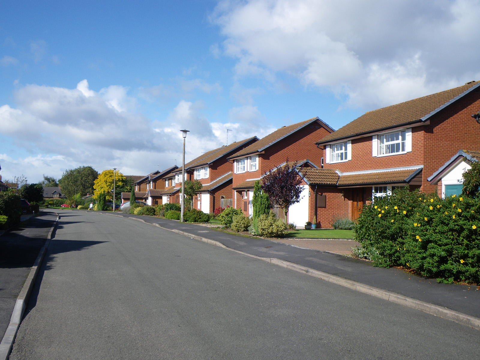 american suburbia in david hasberstams summary of the fifties